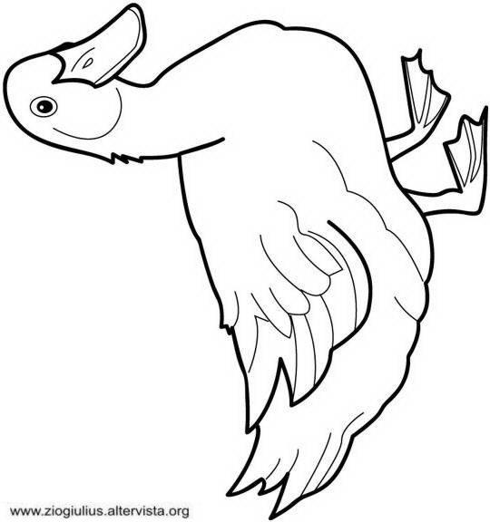 jemima puddle duck coloring pages - photo#17